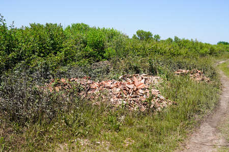 Wild dump and building waste in wild nature