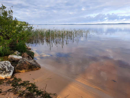 Hourtin lake sand wild beach with calm water in gironde france