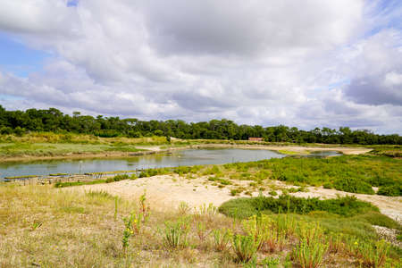 wild water beach sand coast in vendee Talmont-Saint-Hilaire in France Stockfoto