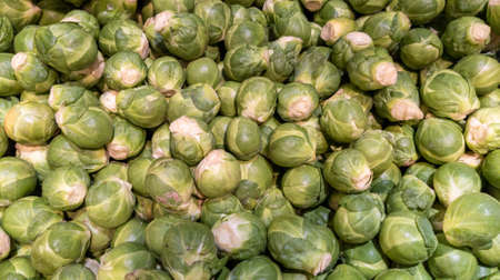 Brussel sprout background Raw Brussels green small sprouts texture Stockfoto