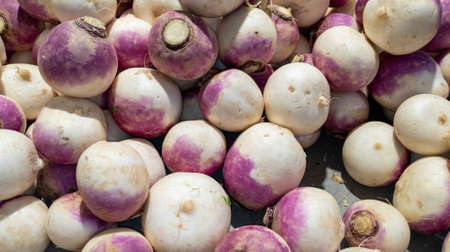 Purple Turnips brassica fresh organic on display at a farmer market stall as background