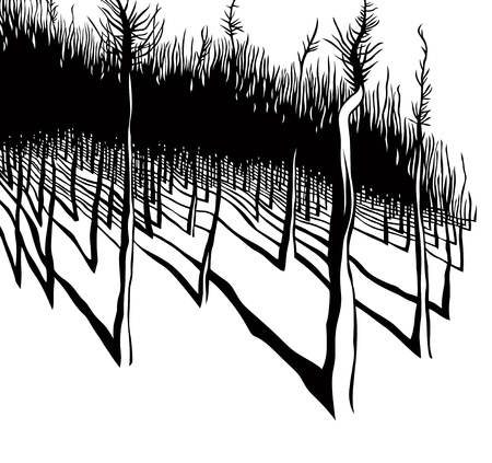 Forest, black and white vector illustration.