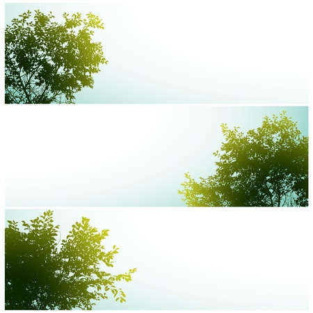 Trees over clear skies. Vector