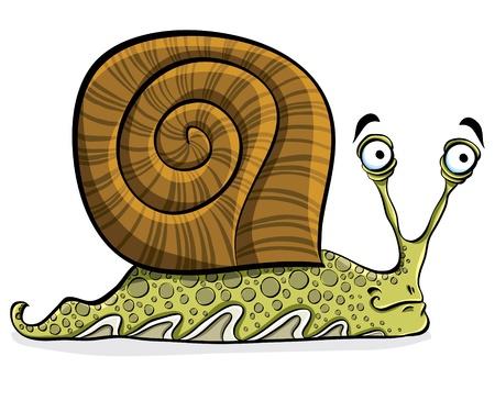 Funny cartoon snail, vector. Illustration