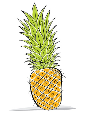 Pineapple vector drawing. Vector