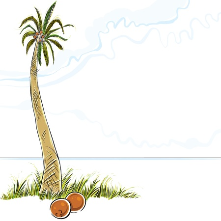 cocos: Illustration of palm tree in island, vector.