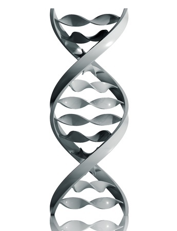 dna strand: DNA icon isolated on white background, 3d