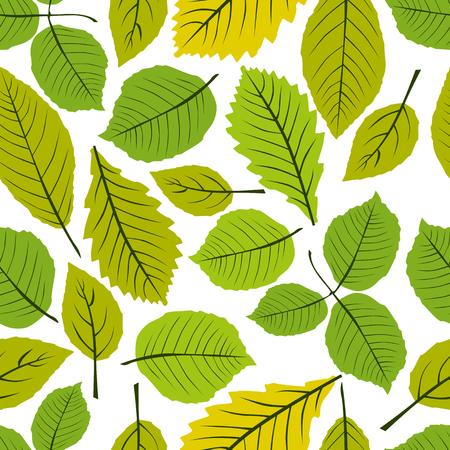Beautiful leaves seamless pattern, vector natural endless background, spring background. Vector