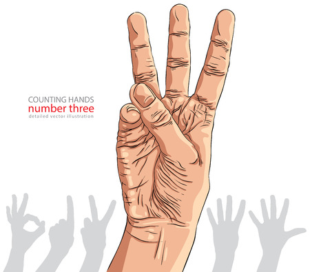 Numbers hand signs set, number three, detailed vector illustration. Stock Vector - 30264633