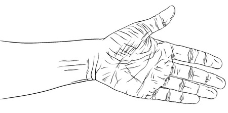 Hand prepared for handshake, detailed black and white lines vector illustration, hand drawn.