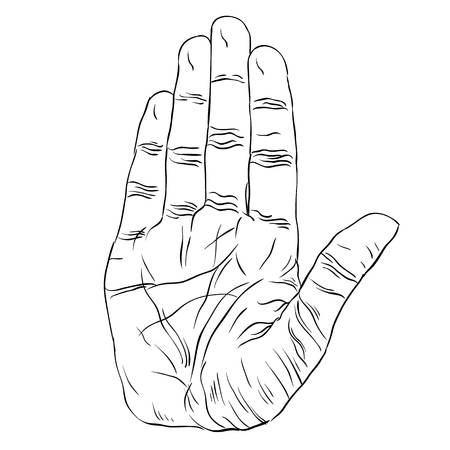 Stop hand sign, detailed black and white lines vector illustration, hand drawn.