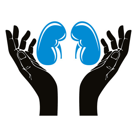 Hands with human kidneys vector symbol. Иллюстрация