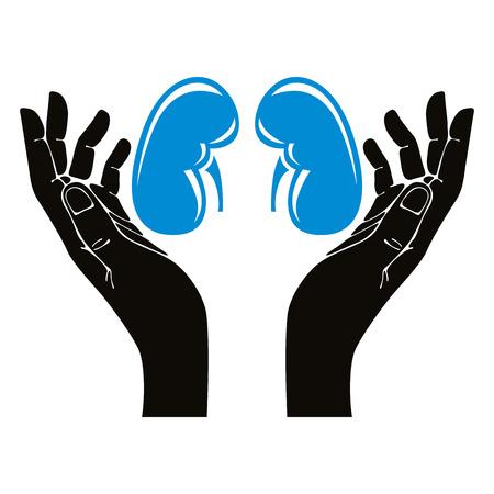 Hands with human kidneys vector symbol. Illustration