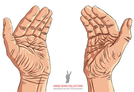 Protecting empty hands with place for some small object, detailed vector illustration.