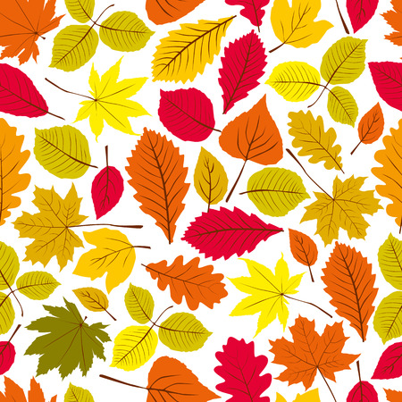 Beautiful leaves seamless pattern, vector natural endless background, autumn background. Vector