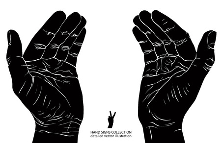 cupped hands: Protecting empty hands with place for some small object, detailed black and white vector illustration.