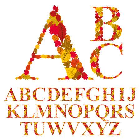 sans: Font made with leaves, floral alphabet letters set, vector design.
