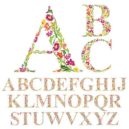 abecedario: Fuente hecha con las hojas, las letras del alfabeto florales conjunto, de diseño vectorial.