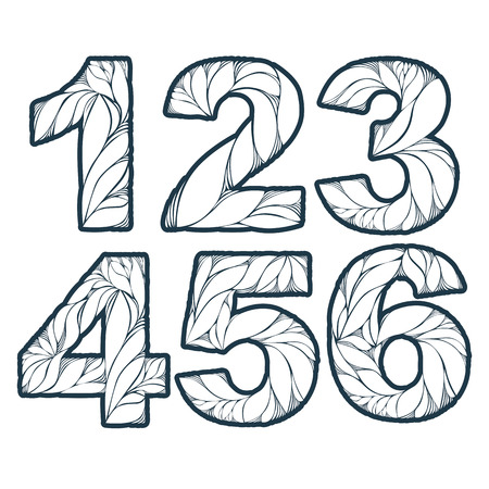 numeration: Vector numeration decorated with leaves, 1, 2, 3, 4, 5, 6. Vintage ornamental numbers set. Illustration