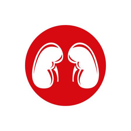 renal: Human Kidney. Single flat icon. Vector symbol.