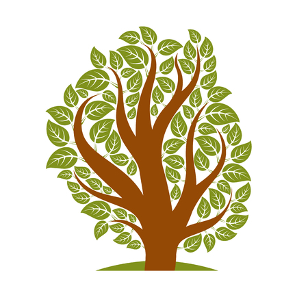 branchy: Vector illustration of stylized branchy tree isolated on white background. Ecology conservation theme image.