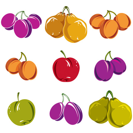 apricot tree: Set of colorful different vector ripe sweet fruits. Apricots, plums, pears, apples and cherries isolated on white background. Organic food symbols. Illustration