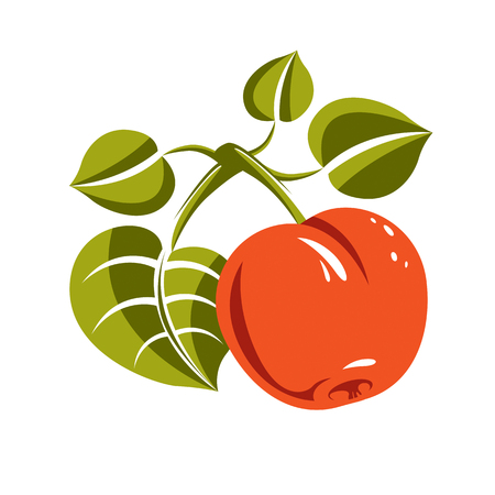 fertility emblem: Vegetarian organic food simple illustration, vector ripe orange peach isolated on white. Whole fruit.