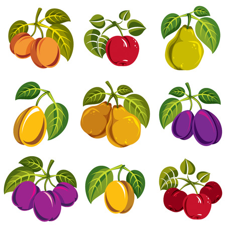 apricots: Collection of 3d simple fruits vector icons with green leaves, harvest season symbols. Apricots, plums, pears, apples and cherries isolated design elements.