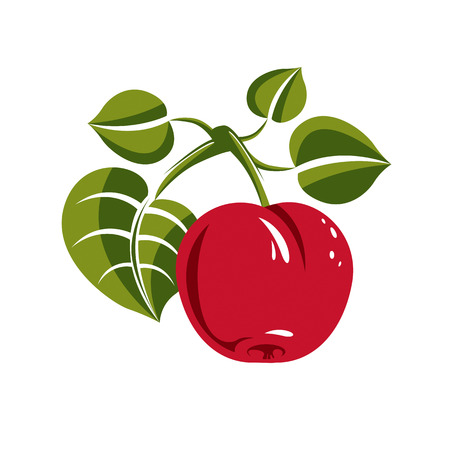 fertility emblem: Single red simple vector apple with green leaves, ripe sweet fruit illustration. Healthy and organic food, harvest season symbol. Illustration
