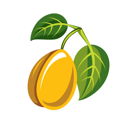 sour: Harvesting symbol, single vector fruit isolated. Single yellow organic sour lemon with green leaves, healthy food idea design icon.