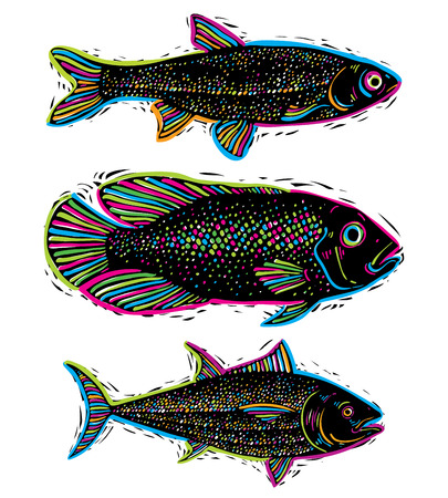 sea bass: Set of vector drawn fishes, different underwater species. Organic seafood graphic symbols collection, freshwater fishes, sea bass, sea bream and salmon.