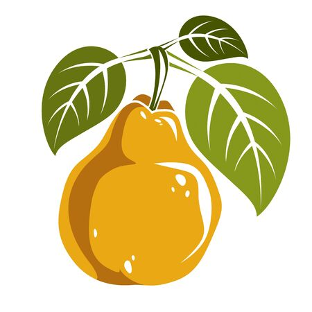fruitful: Single yellow simple vector pear with green leaves, ripe sweet fruit illustration. Healthy and organic food, harvest season symbol.