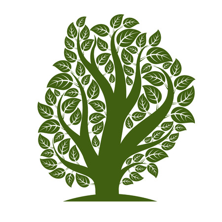 be green: Art vector illustration of tree with green leaves, spring season, can be used as symbol on ecology theme.