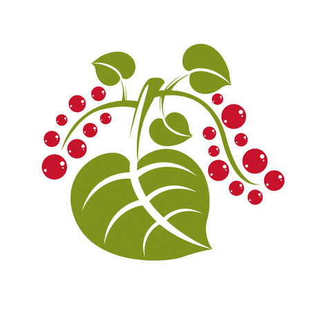 fruitful: Simple flat green deciduous vector tree leaf with red seeds, stylized nature element. Ecology symbol, can be used in graphic design. Illustration