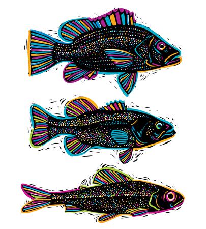 Set di vettoriale disegnato pesci, diverse specie sottomarine. Frutti di Organic simboli grafici di raccolta, pesci d'acqua dolce, spigola, orata e salmone.