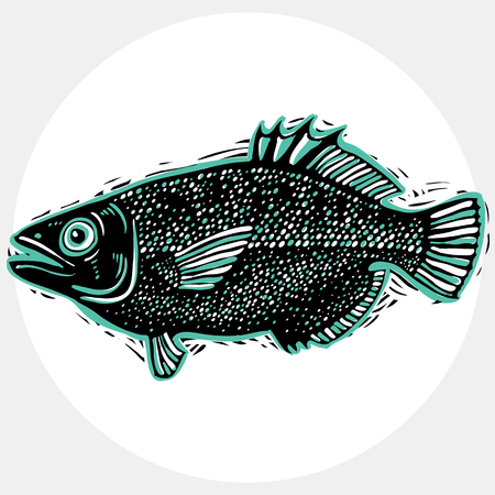 zoology: Vector drawn freshwater fish silhouette, natural graphic symbol. Fauna and wildlife element, zoology species. Illustration