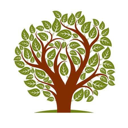love image: Vector illustration of spring tree with branches in the shape of heart, love and motherhood idea image. Tree of life theme illustration.