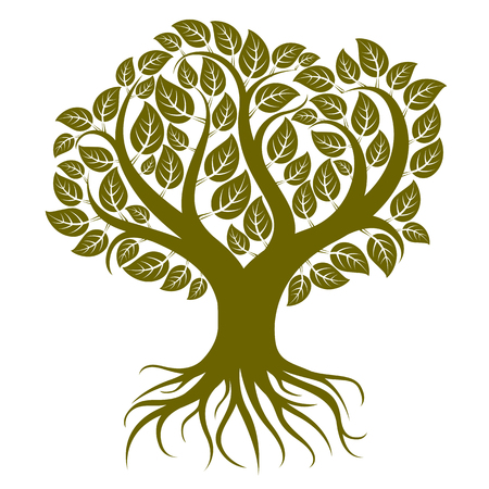 Vector art illustration of branchy tree with strong roots. Tree of life symbolic image, ecology conservation theme. Vettoriali