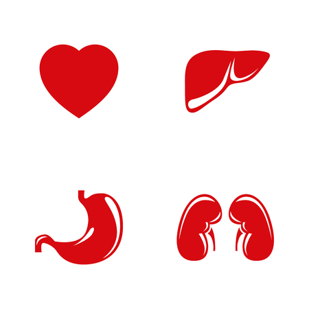 gastroenterology: Human internal organs vector icons set. Illustration