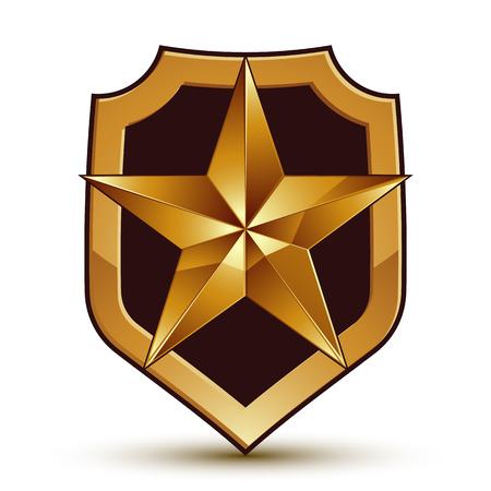 gold star: Sophisticated vector blazon with a golden star emblem, 3d pentagonal design element.