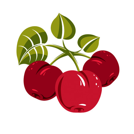 fertility emblem: Red simple vector cherries with green leaves, ripe sweet berries illustration. Healthy and organic food, harvest season symbol.