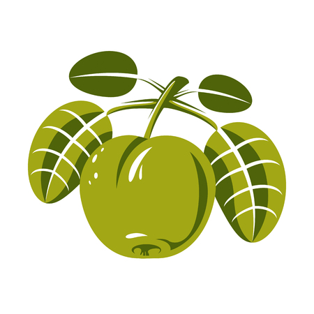 fertility emblem: Harvesting symbol, single vector fruit isolated. Ripe organic sweet apple with green leaves, healthy food idea design icon.