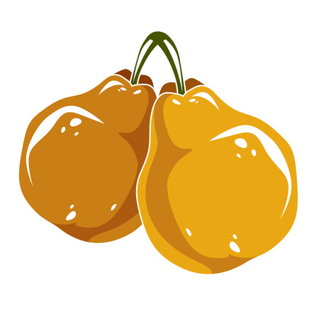 fertility emblem: Two yellow simple vector pears, ripe sweet fruits illustration. Healthy and organic food, harvest season symbol.