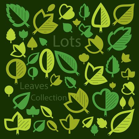 hazel: Spring tree leaves, botany and eco flat images. Vector illustration of herbs, collection of natural and ecology elements can be used in web design.