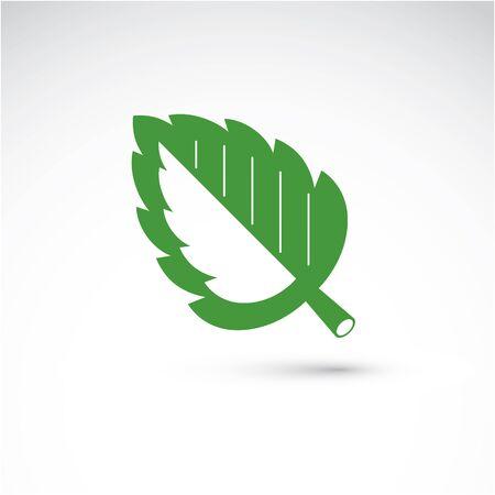 albero nocciola: balestra Nocciolo, botanica ed eco immagine piatta. Illustrazione vettoriale di erba, elemento naturale e l'ecologia migliore per l'uso in progettazione.