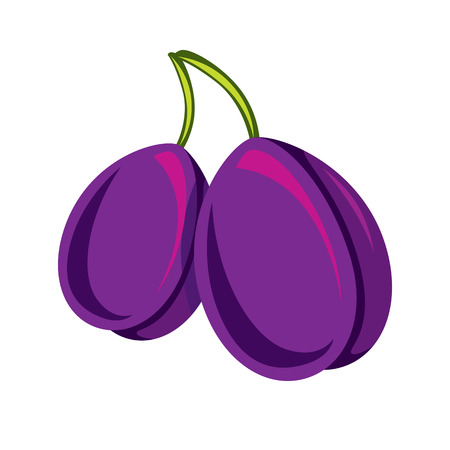 fertility emblem: Two purple simple vector plums, ripe sweet fruits illustration. Healthy and organic food, harvest season symbol.