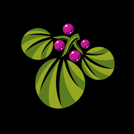 botany: Three spring or summer leaves simple vector icon, nature and gardening theme illustration. Stylized tree leaf with purple berries and seeds, botany and herbal design element.