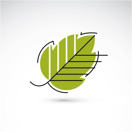 hazel tree: Spring hazel tree leaf, botany and eco flat image. Vector illustration of herb, natural and ecology element best for use in design.