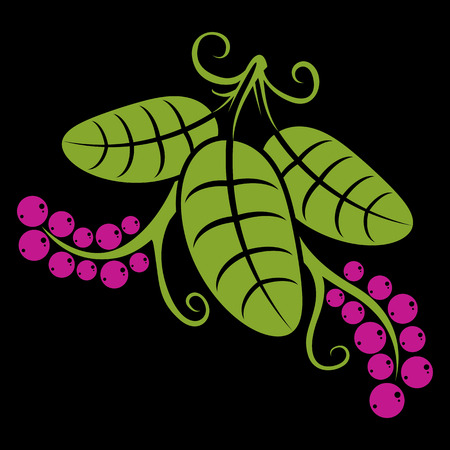 Three spring or summer leaves simple vector icon, nature and gardening theme illustration. Stylized tree green leaf with tendrils and purple seeds, botany and vegetarian design element. Illustration