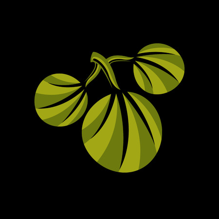 Three simple green vector leaves of deciduous tree, stylized nature element. Ecology symbol, can be used in graphic design. Summer or spring season illustration Illustration